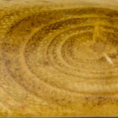 Anagyre - Ronce de Acacia